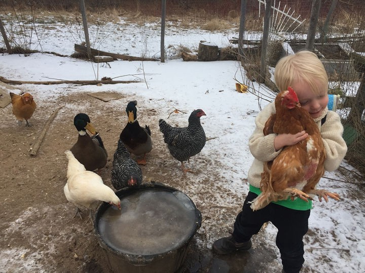 Lola's son with chickens