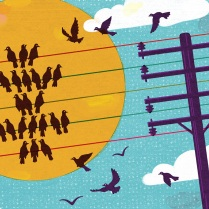 Illustration of birds sitting on telephone wires with the sun in the background